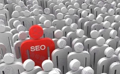 【疯狂seo】大型网站SEO营销策划方案